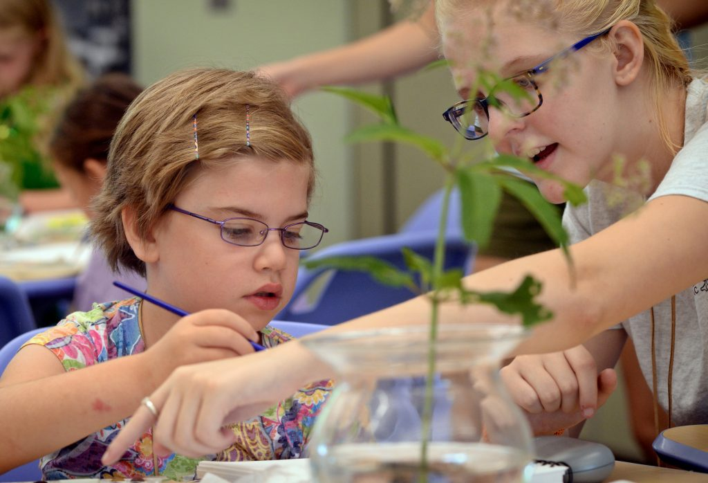 A N.C. Botanical Garden intern helps a child paint during a summer camp.