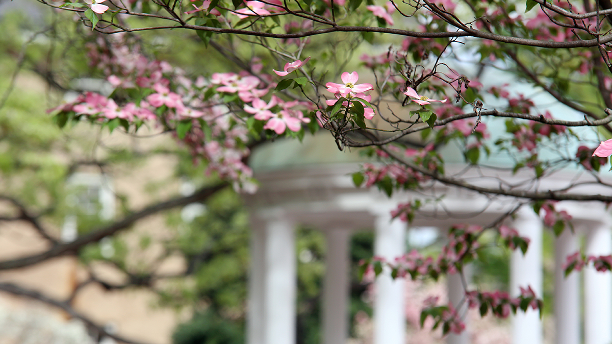 UNC-Chapel Hill graduate programs ranked among best once again in national rankings