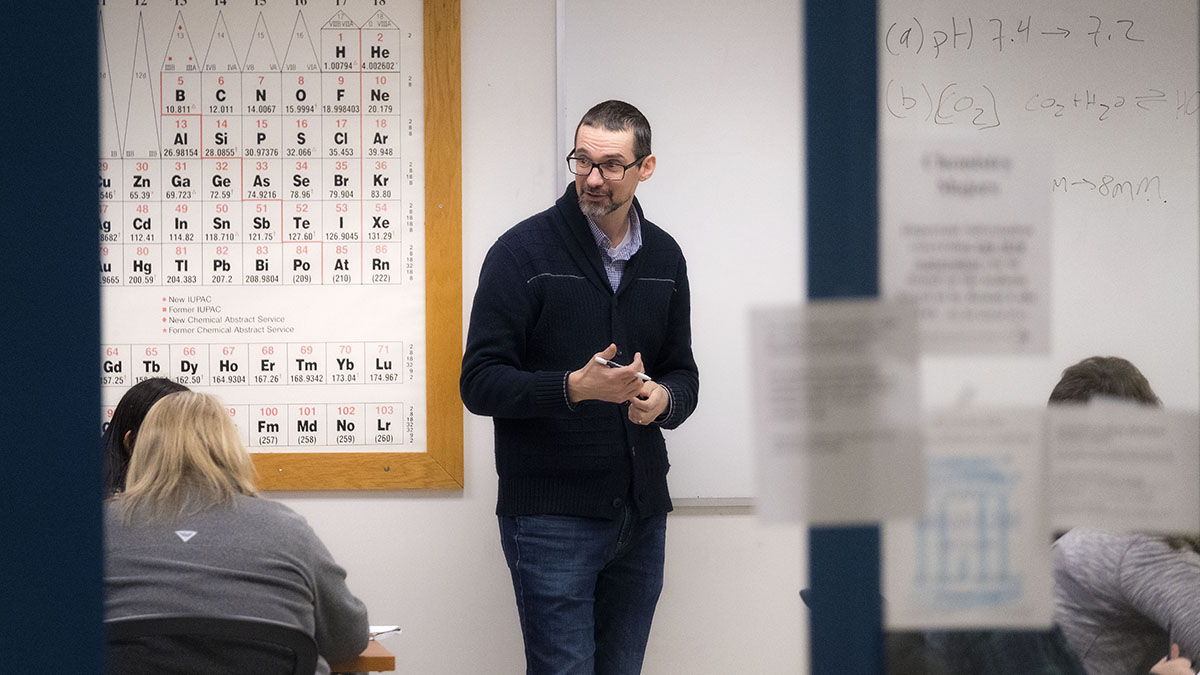 Teaching excellence: Brian Hogan - The University of North ...