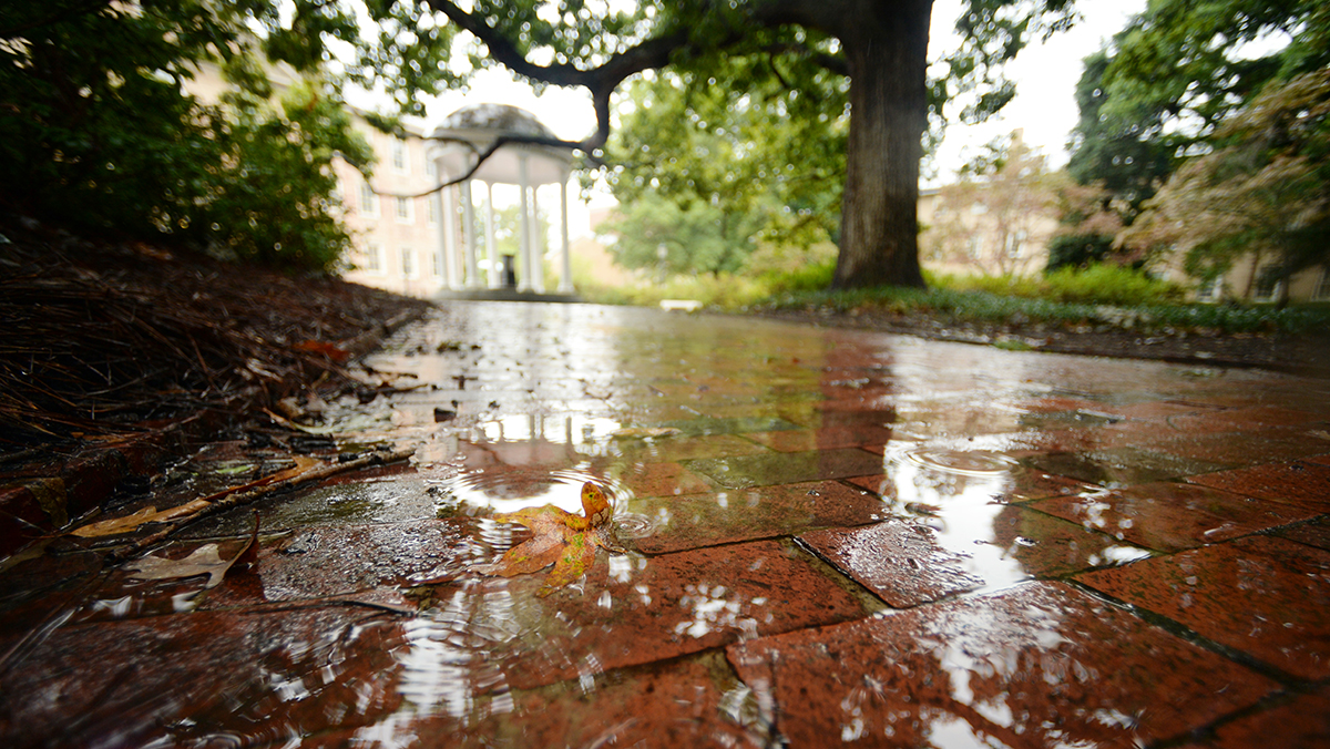 Puddles on a brick walkway.