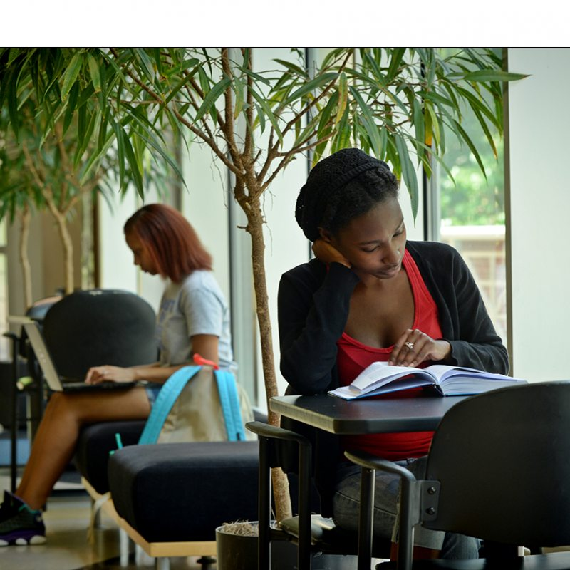 Students read in The Sonja Haynes Stone Center for Black Culture and History.