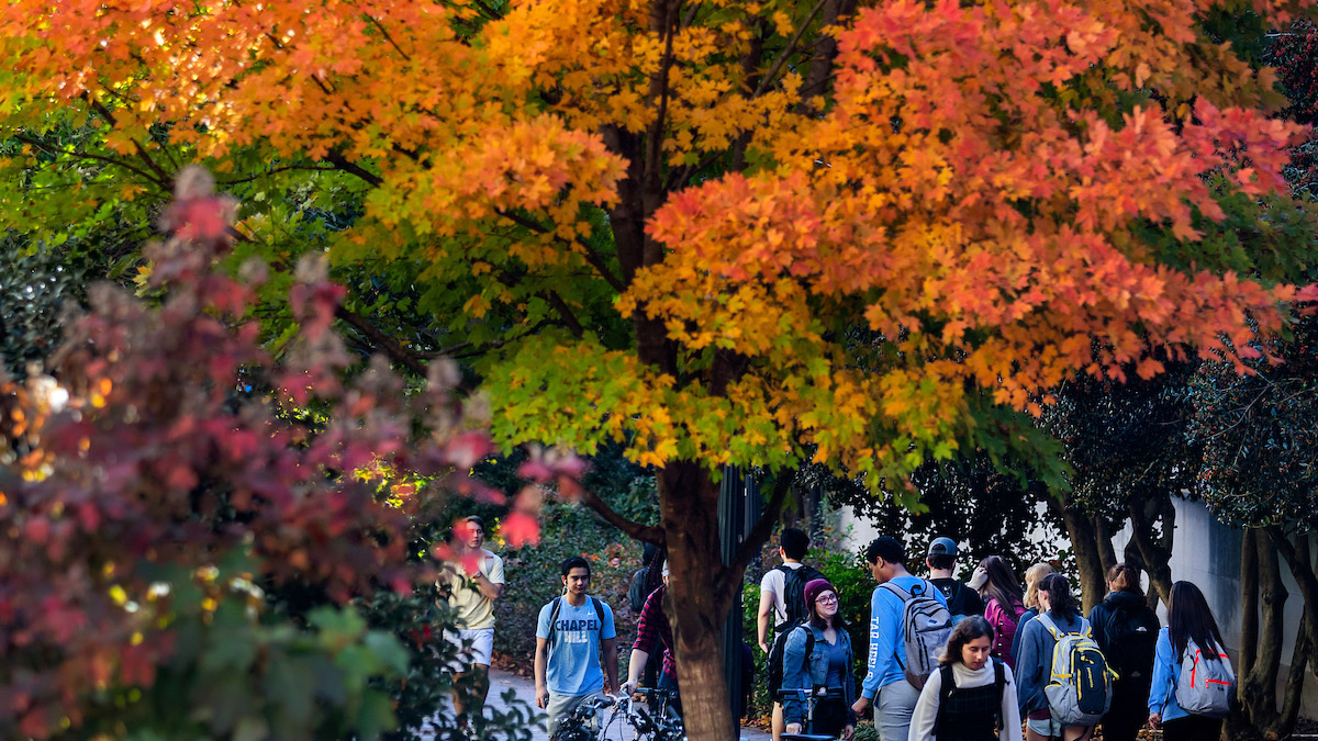 Students walk under colorful trees during the fall.