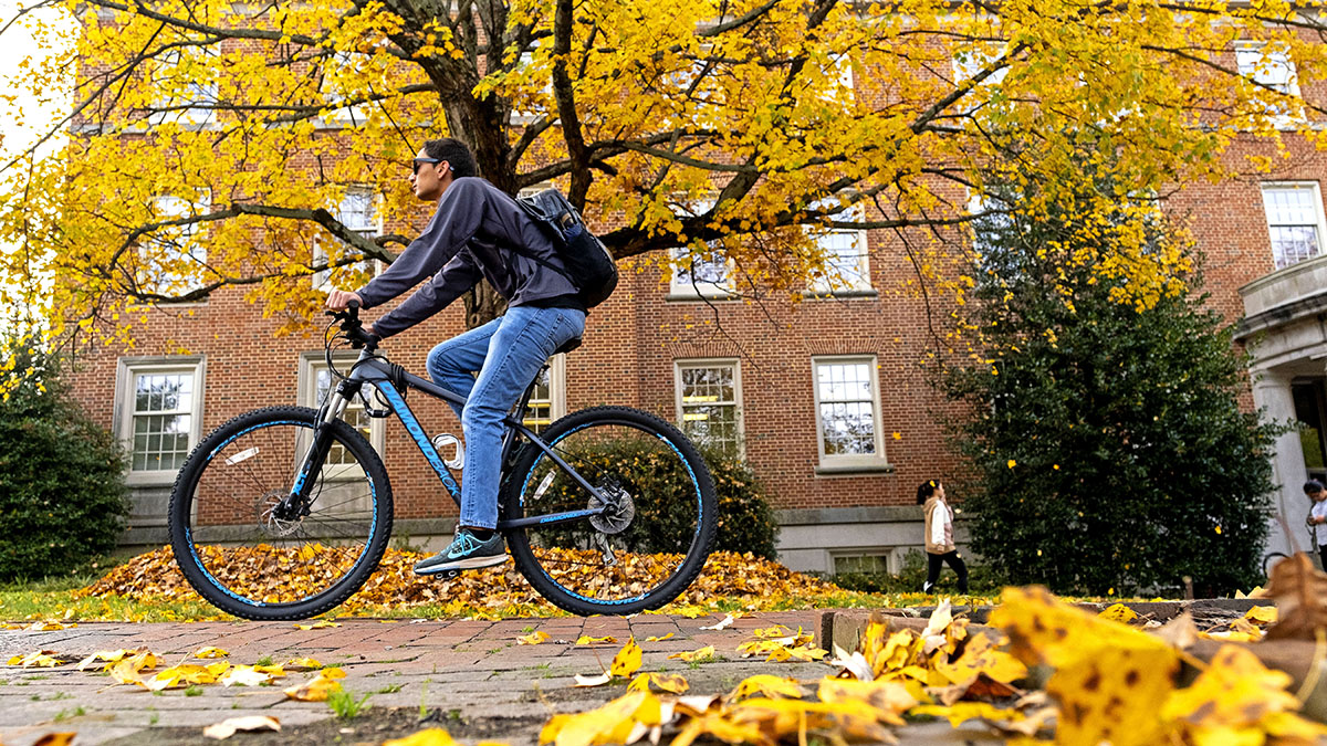 A student rides a bike through yellow leaves on the ground.