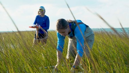 A researcher examines seagrass.