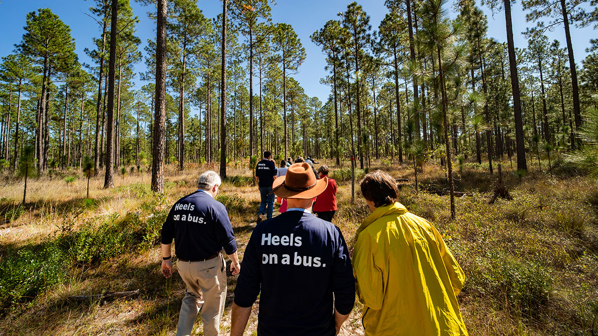 A group of faculty members walk through the woods at Green Swamp Preserve.