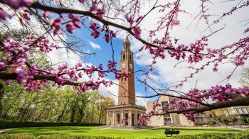 The Bell Tower in the spring