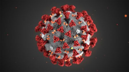 Am image of the coronavirus
