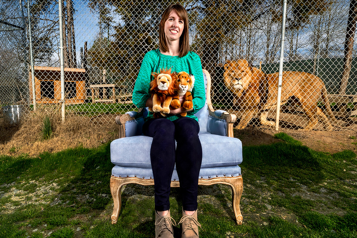 A woman sits in a chair in a zoo with a lion in a pen behind her.