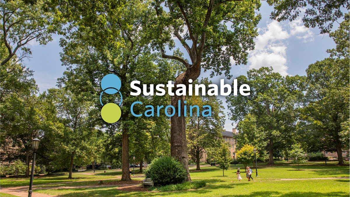 People walk near the Davie Poplar tree on Carolina's campus, with words that read