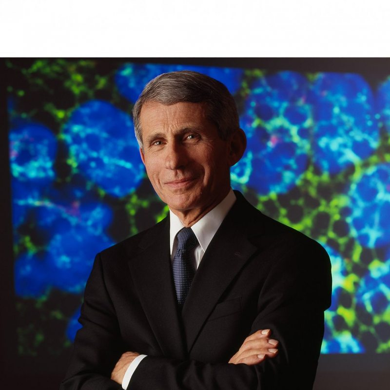 A portrait of Anthony Fauci.